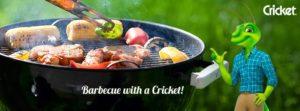 CricketCue