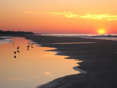 Chucktown Sunrise