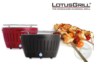 Lotus Grill - Where there is NO smoke....