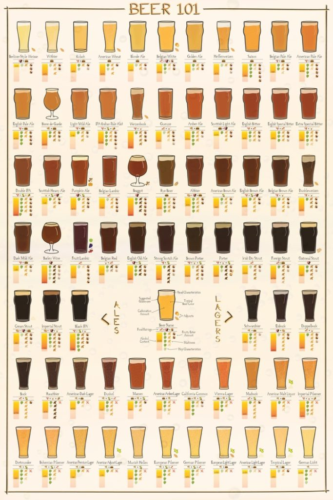 BEER 101: 5 THINGS TO CONSIDER WHILE EVALUATING BEER 12